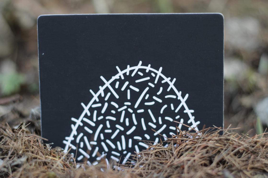 Kontrastní karty - mraveniště